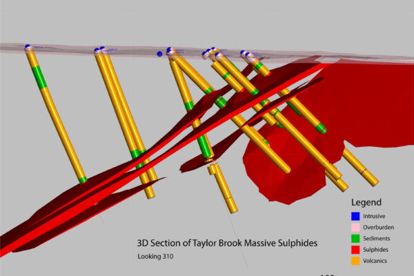 This model indicates the presence of near surface mineralization which may be amenable to open pit development.